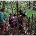 Climbing Through Jungle