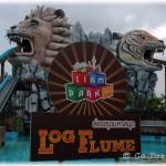 Log Flume