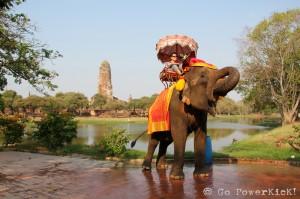Ride an Elephant - Ayutthaya