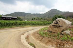 Hua Hin Hills Vineyard - 1