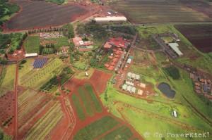 Blue Hawaiian Oahu Helicopter Tour - Dole Plantation